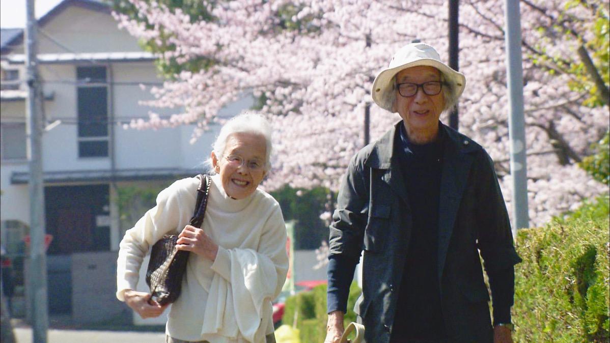 人生フルーツ 桜